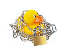 yellow rubber duck with chain and padlock - stock photo