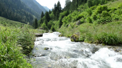 Zillertal Alps stream water though forest and mountains Stock Footage