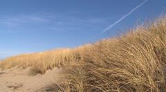 Blue Sky Wind on Sand Dune Stock Footage