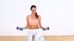 Fit model sitting on exercise ball lifting dumbbells Stock Footage