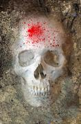 Skull With Blood Spatter - stock illustration