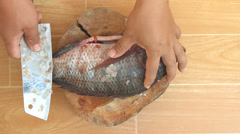 Descaling fish by knife Stock Footage