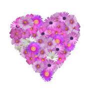 flower heart - stock photo