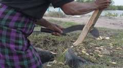 ASIAN WORK & CRAFTS: Man skins bark from a tree branch with scythe - stock footage
