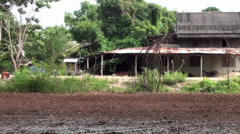 A peaceful, traditional Thai farmyard Stock Footage