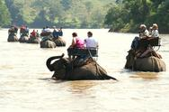 Stock Photo of Touristic Elephant trip