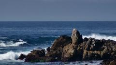 Point pinos rocks1 Stock Footage