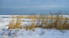 Winter coast view. Stock Footage