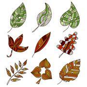 Set of 9 hand drawn decorative leaves, design elements Stock Illustration