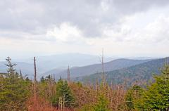 afternoon storm in the smoky mountains - stock photo