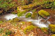 Stock Photo of appalachian stream in the spring