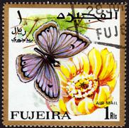 Postage stamp showing a butterfly Stock Photos