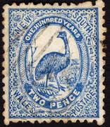 Postage stamp showing showing the image of an emu Stock Photos