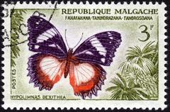 Butterfly depicted on postage stamp Stock Photos
