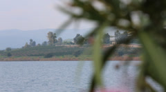 Oleander Flower on the Sea of Galilee Stock Footage