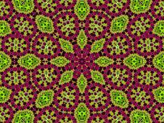 Chrysanthemum natural pattern Stock Illustration