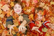 Stock Photo of Boys Playing in the Leaves