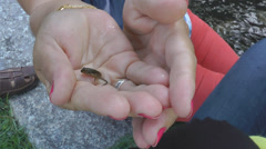 Little frog in hand Stock Footage