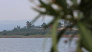 Stock Video Footage of Focus Shift of Blessed Oleander on the Sea of Galilee