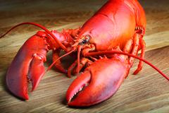Red lobster on wood Stock Photos