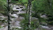 Stock Video Footage of belokurikha mountain river in altai krai. russia.