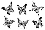 Stock Illustration of beautiful butterflies insects