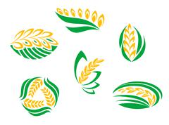 symbols of cereal plants - stock illustration