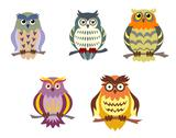 Stock Illustration of color cartoon owls