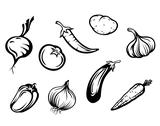 Stock Illustration of fresh vegetables