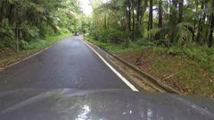 Drive El Yunque National Park POV 1 HD 0236 Stock Footage