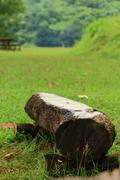wooden timber bench in forest park. - stock photo