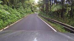 Drive El Yunque National Park POV 2 HD 0236 Stock Footage