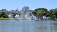 Fountain in Ibirapuera, Sao Paulo Brazil Stock Footage