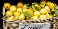 Stock Photo of yellow lemons in basket on market