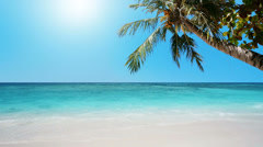 Tropical Heaven: beautiful tropical beach in sunny day Stock Footage