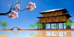 sakura with nice wood house - stock illustration