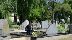 Daughter plant begonia flowers on father grave in cemetery Stock Footage