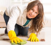 Stock Photo of beautiful young woman cleaning her house