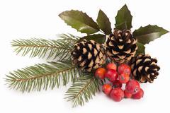 Christmas seasonal border of holly, mistletoe, sprigs with pine cones Stock Photos