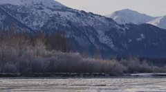 Alaska Winter Sunny Chilkat River Pan Left Icy Trees Stock Footage