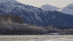 Alaska Winter Eagle Flying Over  Chilkat River Pan Left Sunny Lens Flare Icy Stock Footage