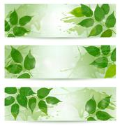 Three nature background with green spring leaves. vector illustration. Stock Illustration