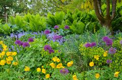 Stock Photo of pacific northwest spring garden