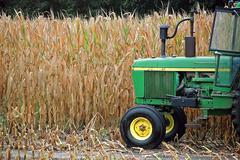 Green farm tractor Stock Photos