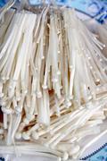 Golden needle mushroom in dish. Stock Photos