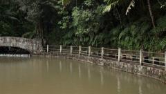 Jungle pool El Yunque Rainforest Puerto Rico pan HD 1776 Stock Footage