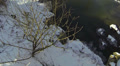 Flight over  small river in the winter wood. Aerial HD Footage