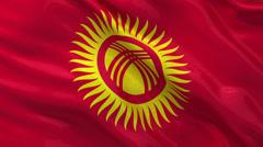 Flag of Kyrgyzstan seamless loop - stock footage
