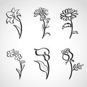 Ink style  sketch set - summer flowers Stock Illustration