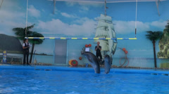 Dolphine show in the reserve Stock Footage